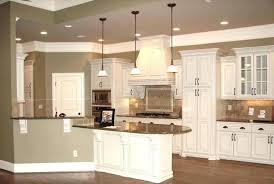 couleur de meuble de cuisine meuble de cuisine noir laque peinture laque meuble cuisine gallery