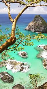 Cool Brazil Flag 269 Best Brazil Adventures U0026 Culture Images On Pinterest Bahia