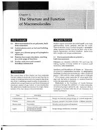chapter 5 study guide and key