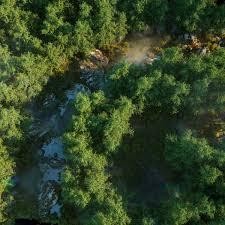 Forest Render Laubwerk Laubwerk Twitter