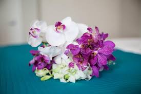Orchid Bouquet Small Orchid Bouquet Stock Photography Image 25156232
