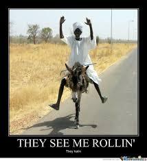 Funny Donkey Memes - donkey memes 23 wishmeme
