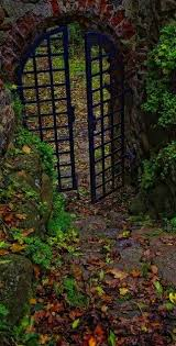 149 best beyond the gate images on gates