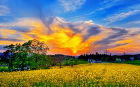beautiful pictures of spring scenery location southern