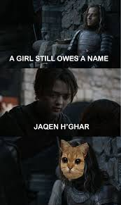 Game Of Thrones Season 3 Meme - you think this is a motherfucking game still my favourite meme