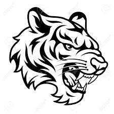 tiger black and white clipart clipartxtras