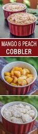best 25 mango dessert recipes ideas on pinterest mango pudding