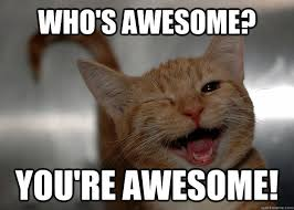 You Are Awesome Meme - who s awesome you re awesome cheer up cat quickmeme