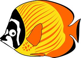 film kartun ikan hiu gambar ikan hias paus hiu kartun lucu alihamdan