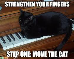 Piano Meme - make your piano playing fingers stronger and faster visihow