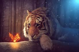 magical tiger and butterfly free wallpaper free