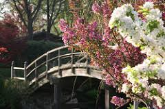 The Missouri Botanical Garden Things To Do