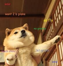 Doge Meme Tumblr - biz business finance