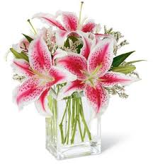 bouquet of lilies pink bouquet flower bouquets radiant stargazer