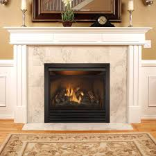 Fireplace Insert Screen by Dual Fuel Vent Free Wall Mount Gas Fireplace Inserts Propane