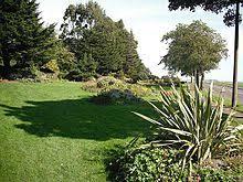 Barnhill Rock Garden Barnhill Dundee