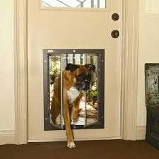 doggie door in glass door dog doors dog and owner reprievepictures of dogs and all about dog