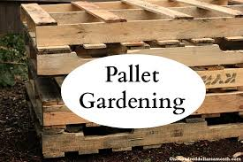 Raised Garden Beds From Pallets - pallet gardening 101 creating a pallet garden one hundred