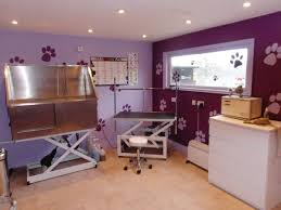 Home Salon Decorating Ideas Best 25 Dog Grooming Salons Ideas On Pinterest Dog Grooming