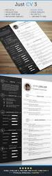 Best Ui Resume by Best 25 Cv Structure Ideas On Pinterest Curriculum Cv Template