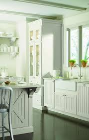 Dream Kitchen Cabinets Martha Stewart Kitchen Cabinets Reviews Ellajanegoeppinger Com