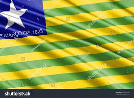 Blank Brazil Flag Waving Flag Piaui State Brazil On Stock Illustration 726897049