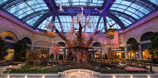 what to do on your first trip to vegas las vegas blogs