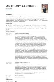 Visual Resume Examples by Insurance Agent Resume Examples Best Resume Collection