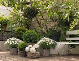 courtyard garden ideas easy garden design ideas photo 3 my garden pinterest small