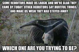 Anteater Meme - anteater meme 28 images go to beach sand will never leave