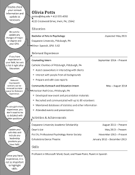 Psychology Resume Examples by Psychology Sample Resume