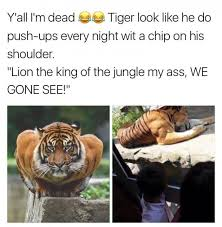 Frosted Flakes Meme - he been eating his damn frosted flakes flakes memes and humor