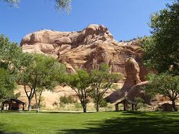 easy landscape ideas for arizona homeowners evergreen turf