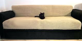 sofa material for cats cat friendly couch material nandanam co