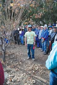 a wealth of pruning advice for amateur orchardists the tribune