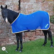 magnetic horse rug brodpod