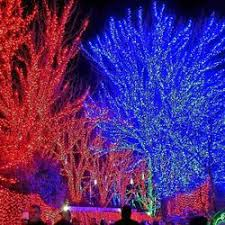 oregon zoo lights 2017 zoolights 39 photos 11 reviews festivals 4001 sw canyon rd