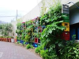 milk crate vegetable vertical garden vegetable gardening
