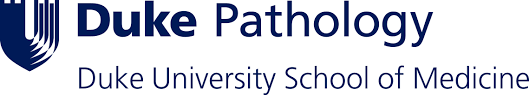 Association Of Pathology Chairs News Duke Department Of Pathology