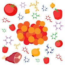 chimie et cuisine illustration moléculaire de concept de gastronomie caviar