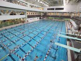 if you u0027d rather swim than run these 10 lap pools await you