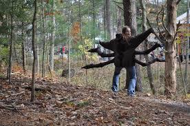 native plants and animals shavers creek festival courses halloween maple sugaring interpretation