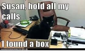 Cheezburger Meme Creator - susan doman mw susan hold all inv calls 10und a box iganh as