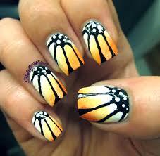 orange daisy flight of whimsy