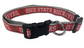 Ohio State Fire Pit by Amazon Com College Ohio State Buckeyes Dog Collar Large Pet