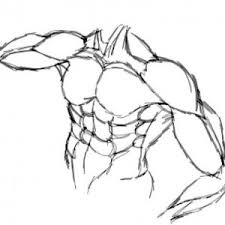Human Anatomy Upper Body 1 References For Coloring Pages Part 132