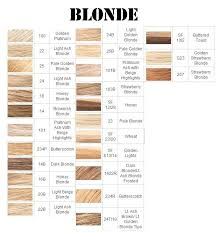 Color Beige Best 25 Beige Hair Color Ideas On Pinterest Beige Hair Beige