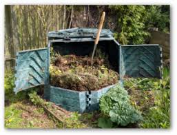 how to make compost tea for your vegetable garden