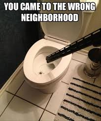 Funny Spider Meme - spider in toilet funny dump a day
