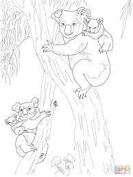 koala moms with babies coloring page free printable coloring pages